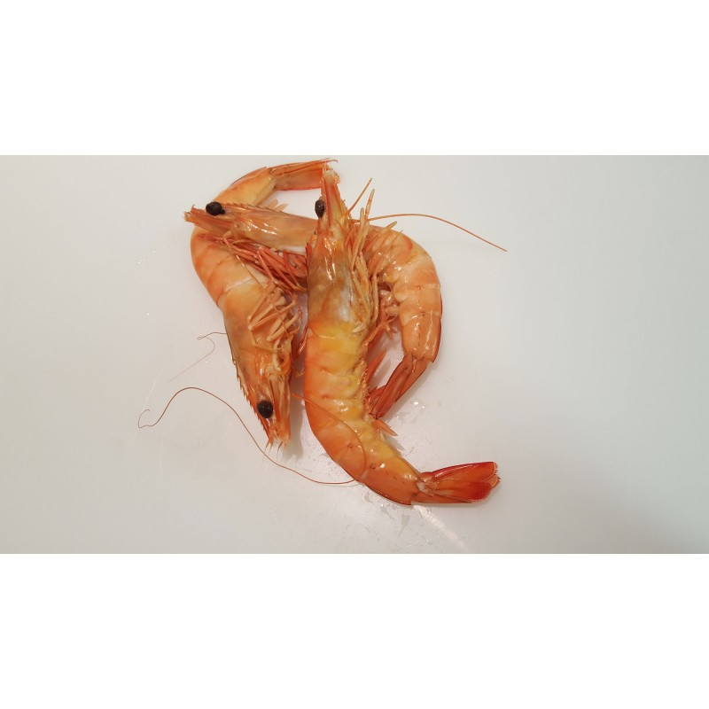 Crevettes Sauvages de Madagascar