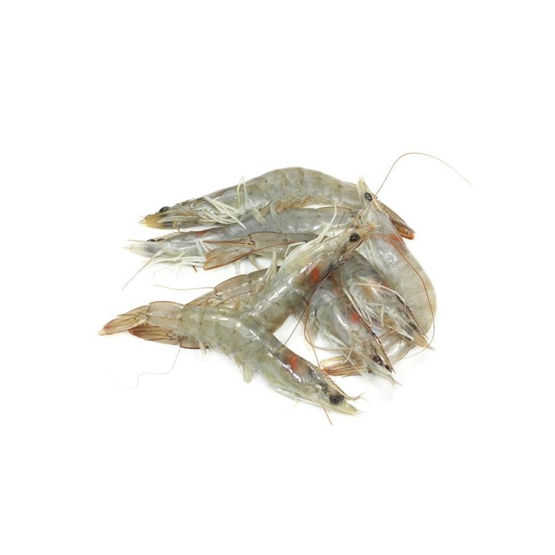 6 Crevettes Crues Moyennes
