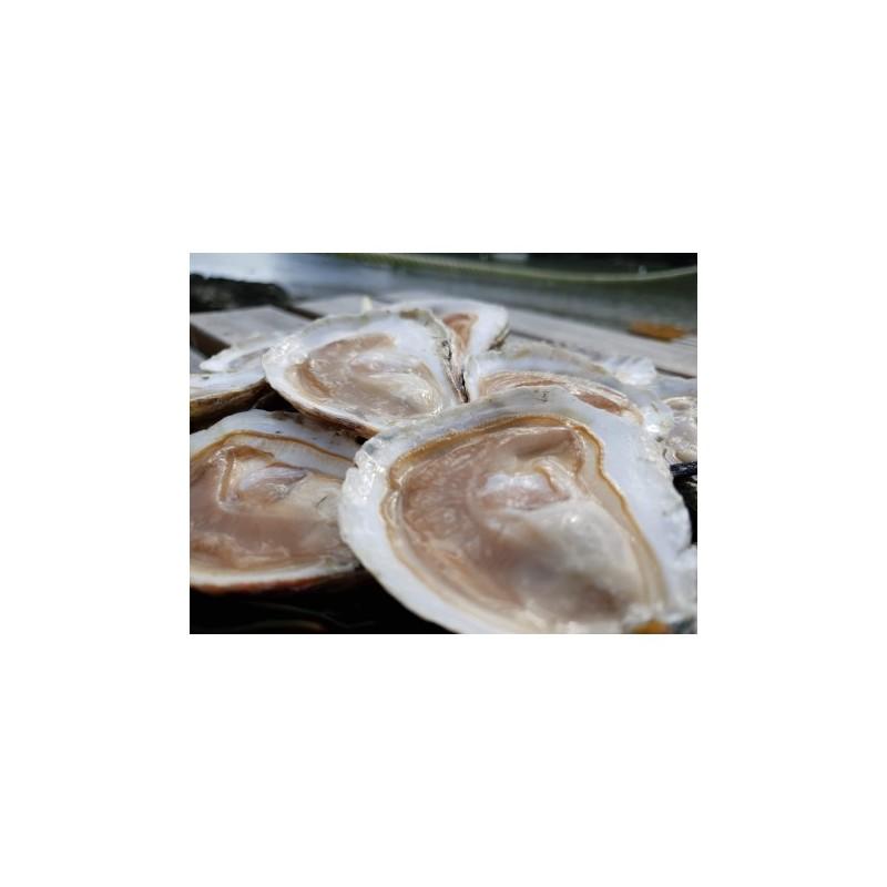 Huîtres plates - Belon 00
